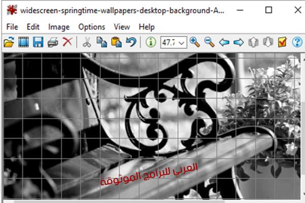 برنامج ايرفان فيو IrfanViewلتحرير وعرض الصور عبر الكمبيوتر