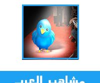 اشهر 10 حسابات عربية على تويتر مشاهير سعوديين و عرب الاكثر نشاطا و متابعة على تويتر - دليل مشاهير تويتر