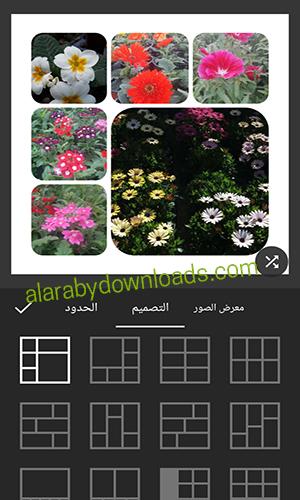 اختيار شكل تصميم مربعات الصور عبر in shot