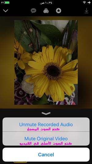 كتم الصوت الأصلي والمسجل في فيديو كليبس - ازالة الصوت من الفيديو
