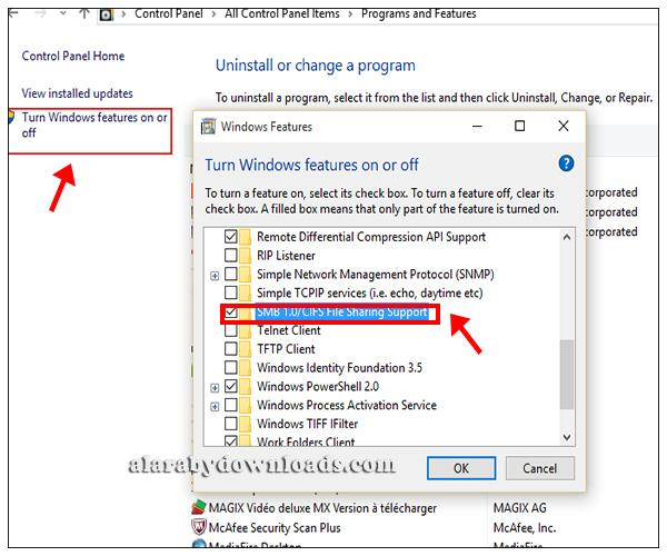 فيروس الفدية Ransomware Wannacry