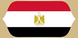 علم مصر - مباراة السعودية ضد مصر