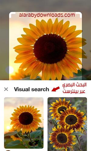 البحث باستخدام فلاتر البحث وباستخدام البحث البصري
