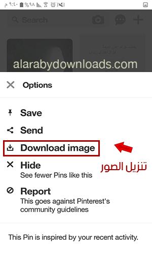 أبرز الخيارات الخاصة بالصور عبر بينترست عربي