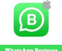 تحميل واتس اب بزنس للايفون WhatsApp Business شرح طريقة تفعيل واتساب للاعمال مميزات واتساب بزنس للايفون تشغيل واتسابين مجانا بدون جلبريك